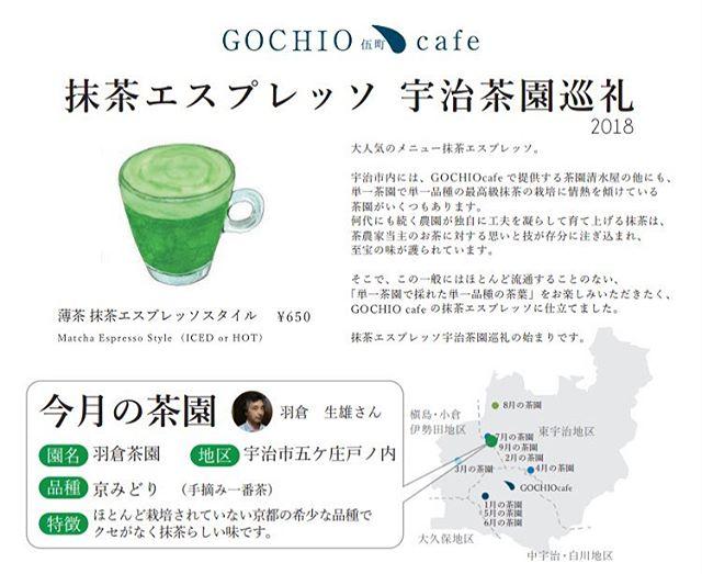 明日9/1〜の薄茶抹茶エスプレッソは羽倉...