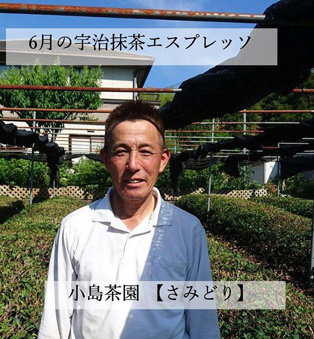 今月の宇治抹茶エスプレッソは小島茶園の【...