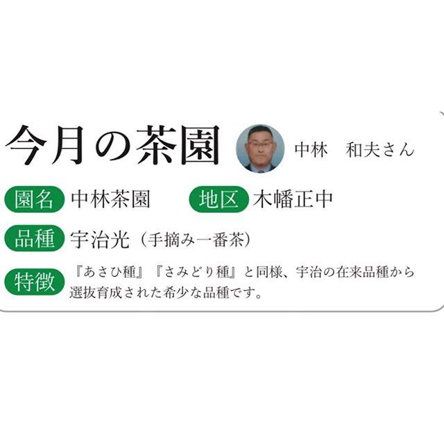9月の宇治抹茶エスプレッソは中林茶園の【...